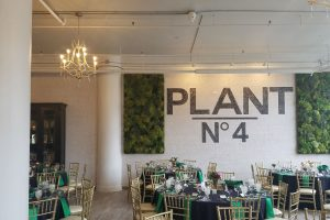 1-plant4